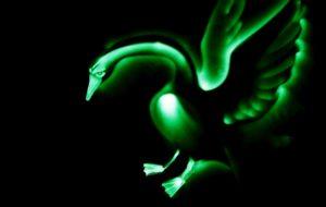 Шоу световых картин Гуси-Лебеди